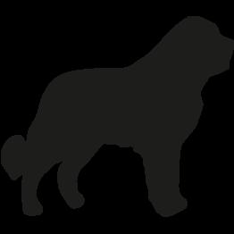 Sehr grosse Hunde